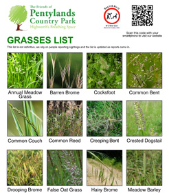 grasses_list_small